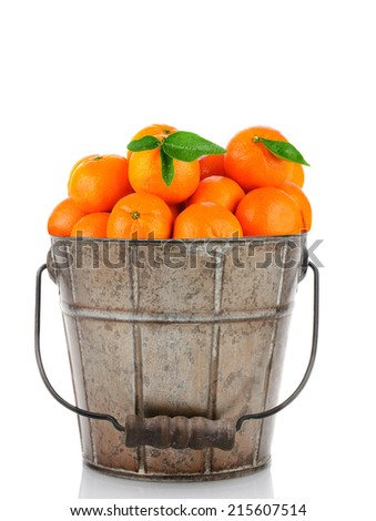 A, antique metal bucket full of Clementine Mandarin Oranges. Vertical format over a white background with reflection. - stock photo
