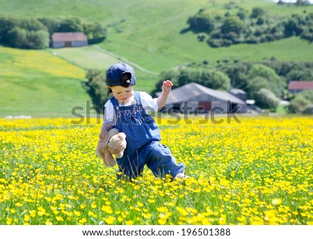 A baby girl in dungarees and baseball hat with a soft toy in her hands walking in the field full of buttercups - stock photo