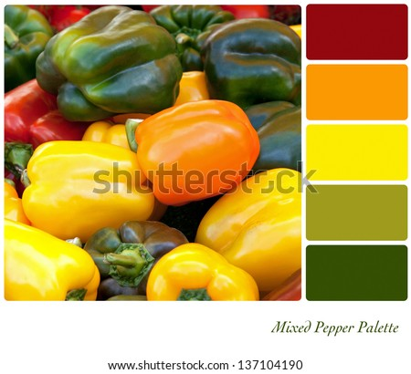 A background of fresh mixed peppers in a colour palette with complimentary colour swatches. - stock photo