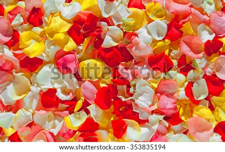 A background of multi-colored rose petals - stock photo