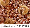 A background of sweet chestnuts showing chestnuts that have been shelled with occasional nuts still in the prickly outer cases - stock photo