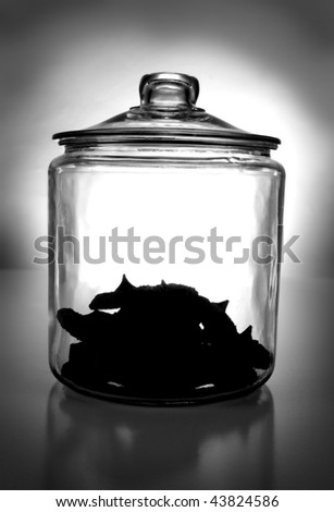 A backlit cookie-jar. - stock photo