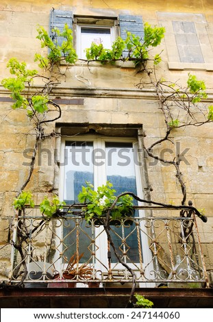 A  balcony of old house overgrown with grapevine. Arles (Provence, France).  - stock photo