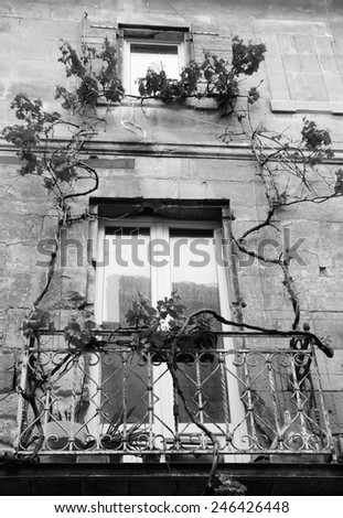 A  balcony of old house overgrown with grapevine. Arles (Provence, France). Aged photo. Black and white. - stock photo