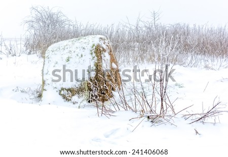a bale of hay covered with snow - stock photo