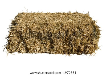 a bale of straw on a white background