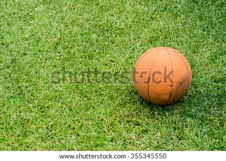 A ball on the green grass