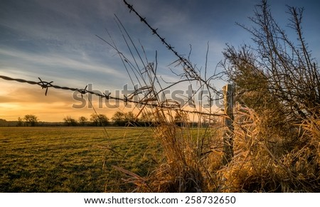 A barbed wire fence with wooden post in the countryside - stock photo
