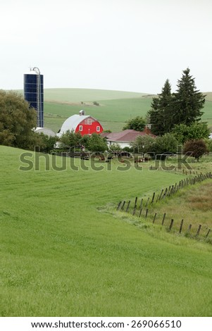 A barn in the Palouse area of Washington state, during gentle rain storm. - stock photo