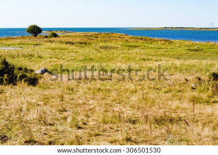 A barren and flat part of the coastline with sparse shrubbery and dry vegetation. It is a calm summer day with warm sunlight and very little wind. Kristianopel, Sweden. - stock photo
