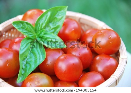 A basket filled with ripe cherry tomatoes and a leaf garnish. - stock photo