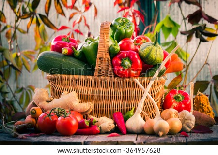 A basket full of fresh vegetables in a rural setting
