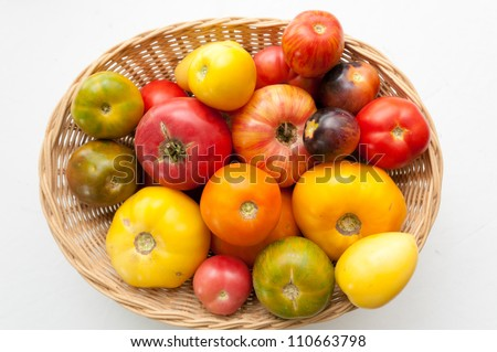a basket of farm fresh heirloom tomatoes with many varietal kinds - stock photo