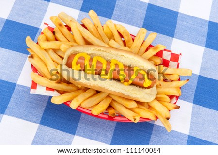 A basket of french fries and a hotdog with mustard on a tabletop covered with a checkered tablecloth. - stock photo