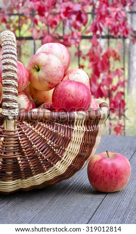 A basket of fresh red apples on a background fence with autumn leaves.