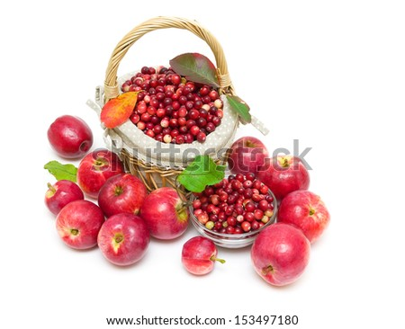 a basket of ripe cranberries and ripe red apples isolated on a white background close-up - stock photo