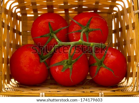 a basket of tomatoes with a sprig. healthy food