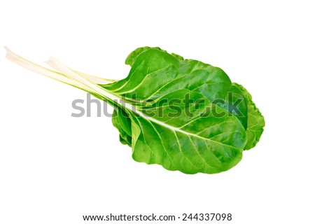 A beam of yellow chard isolated on white background - stock photo
