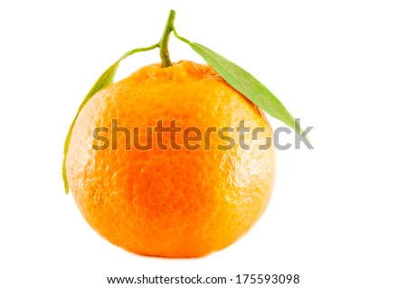 a beautiful alone citrus