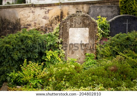 A beautiful, ancient tombstone sits in a very green garden with copyspace - stock photo