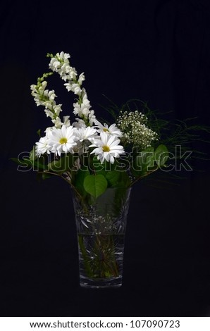 A Beautiful Arrangement of White Flowers in a Crystal Vase on Black