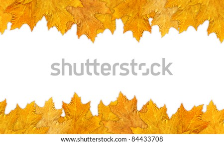 A beautiful autumn frame with leaves