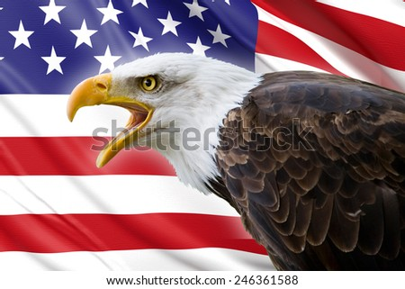 a beautiful bald eagle with a background of a usa flag - stock photo
