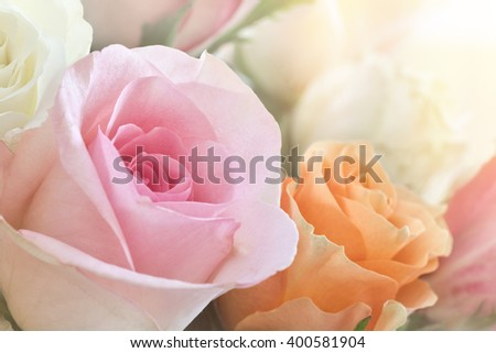 A beautiful bouquet of colorful roses kissed with warm sunlight. - stock photo