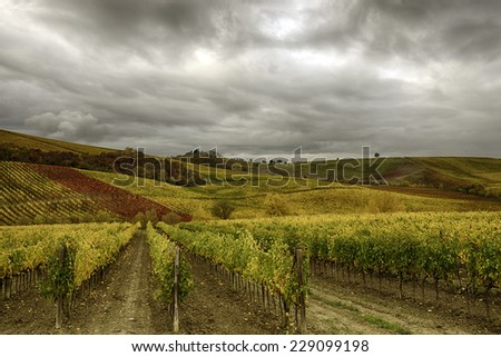 A beautiful colored autumnal landscape in Tuscany - stock photo