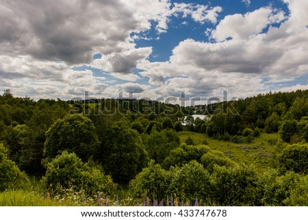 A beautiful countryside landscape, forest, trees, bushes, grass, houses, lake, cloudy sky. Belarus.