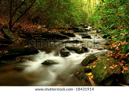 A beautiful creek during fall of the year in Virginia. - stock photo