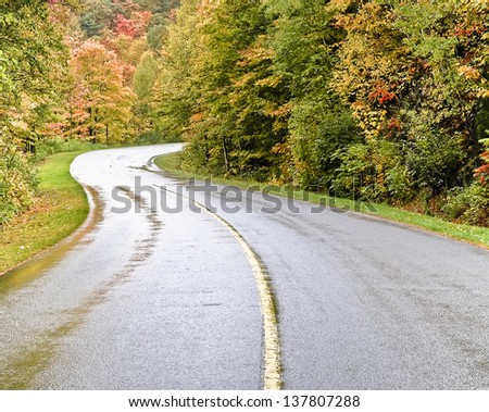 A beautiful curved road in the middle of a forest in autumn. - stock photo