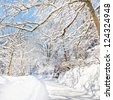 A beautiful day in winter wonderland. Snow-capped trees over snowy country road. - stock photo