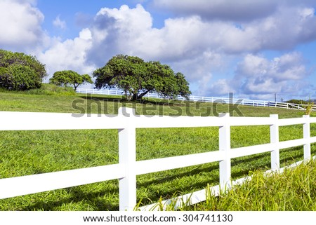 A beautiful farm field surrounded by a white fence in Kauai, Hawaii shows a lone tree in the middle of the green pasture. - stock photo