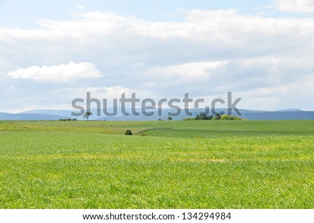 A Beautiful farm with green landscape