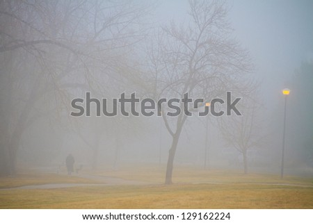 A beautiful foggy morning with the park lights still on late morning making a setting  for a really cool mood.   View with a person walking away. - stock photo