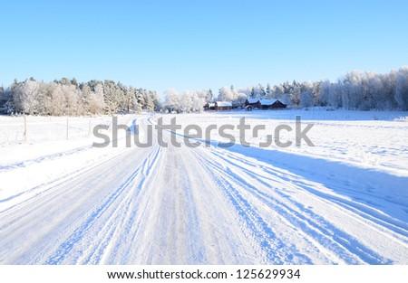 A beautiful frosty landscape in winter - stock photo