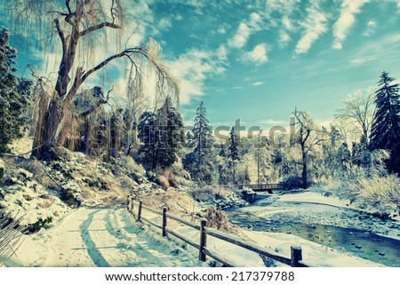 A beautiful frozen park landscape on a sunny day after an ice storm with a stream running under a bridge in the background under a large frozen willow tree.  Filtered for a retro, vintage look. - stock photo