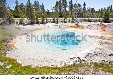 A beautiful Geyser at Yellowstone National Park