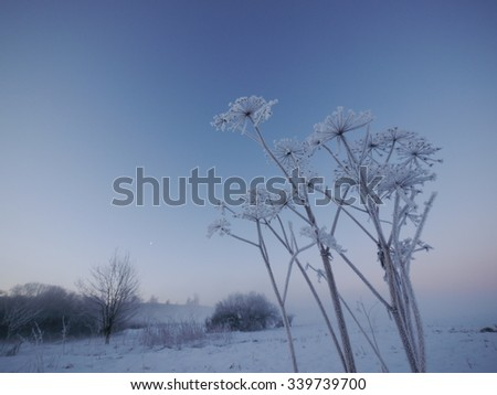 a beautiful landscape with snow - stock photo