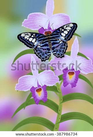 A beautiful Malaysian Blue Clipper butterfly (Parthenos Sylvia) at tropical bamboo orchids illustrated by Steven Russell Smith. - stock photo