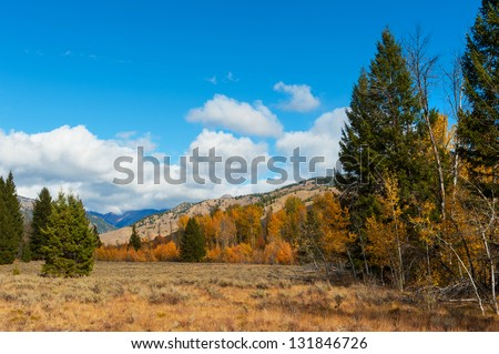 A beautiful meadow for hiking near Sun Valley, Idaho