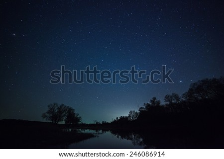 a beautiful night sky, the Milky Way and the trees - stock photo