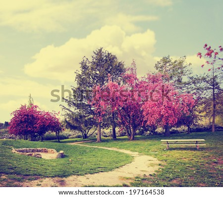 a beautiful park with a path and bench done with a retro vintage instagram filter  - stock photo