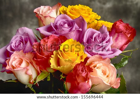 A beautiful portrait close-up of multicolor bouquet of roses of pink, yellow, purple and red.    - stock photo