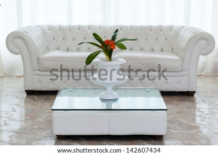 a beautiful potted plant with orange flowers on a minimal table and a white and cozy sofa - stock photo