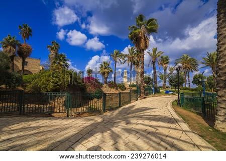 A beautiful promenade with palm alley. Jaffa, Tel Aviv. Israel. - stock photo