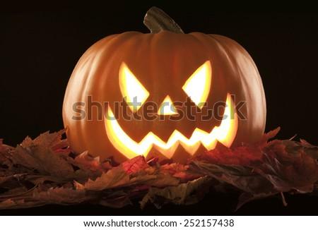 A beautiful pumpkin in a studio black background - stock photo