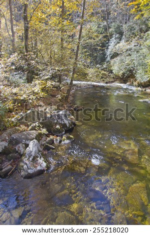 A beautiful, rocky and clear mountain river running through a colorful deciduous woodland in autumn - stock photo
