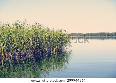 A beautiful scene at the sea through high grass on the left side. Image has a vintage effect applied. - stock photo